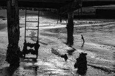 """""""Senza sogni, incolore campo è il mare"""" Giuseppe Ungaretti # photography"""