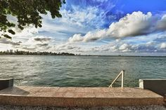 View from the garden of this Bungalow in Miami http://www.roomyeti.com/rentals/united-states/627773/