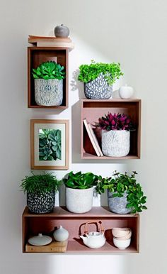 "This collection of ideas to display houseplants from @balconygardenwe makes excellent use of indoor decorative planters. Picture this: Southern Patio's line of 6"" Ceramic Lorna Planters in white for these Bohemian settings. http://www.southernpatio.com/products/lorna/crm-030911-clayworks-6-lorna-planter-white/"