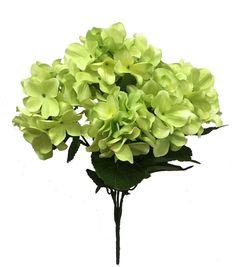 Blooming Spring 19'' Hydrangea Bush-Green