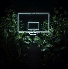 neon basketball hoop - Google Search