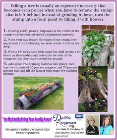 Great way to decorate up those ugly stumps in your yard. #krogmanrealtor #krogmantips #byebyeuglystumps