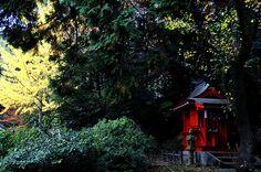 北八幡具稲荷神社 Kitahachimangu Inari Shrine #shrinehoppers #Japan