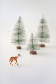 ★ L' Etoile   Noël