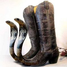 snake-toed cowboy boots - or perhaps Botas picudas mexicanas Crazy Shoes, Me Too Shoes, Weird Shoes, Mode Bizarre, Mode Swag, Funny Shoes, High Heels Boots, Pointy Boots, Schuster