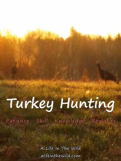 Turkey hunting takes patience. These turkey hunting tips might help fill your tags.