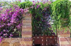 Anastasia Raptopoulou - Google+ Chios, Anastasia, Arch, Outdoor Structures, Sign, Garden, Google, Longbow, Garten