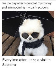 Get your laugh on to these super funny pics! Animal Memes, Funny Animals, Cute Animals, Animal Funnies, Animal Quotes, Baby Animals, Lol, The Villain, Funny Cute