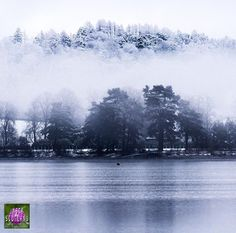 @eilidh__cameron with tonight's second choice.  Congratulations to  @louiseoupas  For this beautiful capture of Milngavie Reservoir looking like a winter wonderland.  Get over to their amazing gallery to show some appreciation Also remember to check out our #insta_scot of the month @stuartmcgeown who will be selecting next months winner from images tagged to #insta_scotland Tag all you relative shots to #insta_scotland and go follow @insta_scotland by insta_scotland
