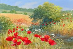 Mary Dipnall painting ~ poppy meadow
