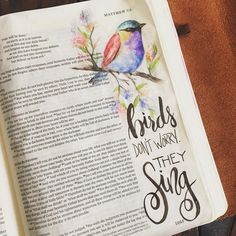 """Look at the birds of the air: they neither sow nor reap nor gather into barns, and yet your Heavenly Father feeds them. Are you not more valuable than they?"" Matthew 6:26 #biblejournaling #illustratedfaith #handlettering"
