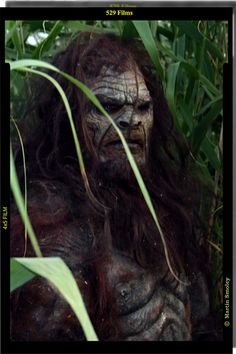 Bigfoot - Our first film... this is what i imagine it looking like!