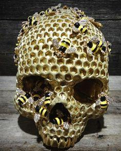 Bee_hive_skull-jack_of_the_dust-skull_head_jack_of_the_dust-trampt-224610m
