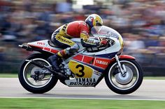 Kenny Roberts 1982
