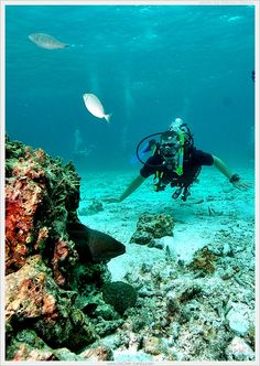 SCUBA DIVING with Go Dive Lanta :: Ko Lanta, Krabi, THAILAND.