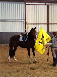 Schrikken we van vlaggen Bij Horseimprovement Oostburg