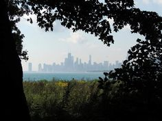 Admire the skyline from Montrose Point Montrose Point isn't just a bird sanctuary. It also offers the best damn view of Chicago's skyline.