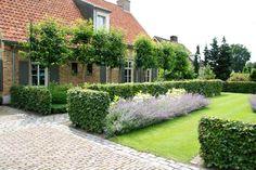 Landelijke tuin Hoeven_Tuinmeesters©