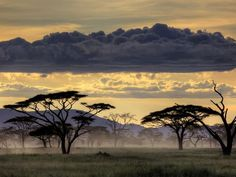 Sunset over Serengeti National Park - My Destination