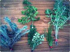 Don't let your garden go to waste! Here's how to dry your herbs for money-saving eating all winter long | @offbeathome