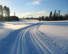 went cross country skiing today. so much fun Ski Ski, Weekly Goals, Cross Country Skiing, Snow Skiing, Winter Beauty, Go Outside, Outdoor Activities, Amazing Places, Fun Things
