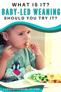 Are you looking for an easy alternative for pureed baby foods? Stumbled across baby-led weaning but think it's too radical? Learn more about baby-led weaning here. Feeding Baby Solids, Solids For Baby, Baby Puree Recipes, Baby Food Recipes, Baby Hacks, Baby Tips, Baby Ideas, Baby Led Weaning, Weaning Toddler