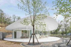 Image 10 of 19 from gallery of Aranya Café / odd. Photograph by Ruijing Photo Urban Landscape, Landscape Design, Column Structure, Round Building, Canopy Shelter, Arch Interior, Desert Homes, Glass Facades, Curved Glass