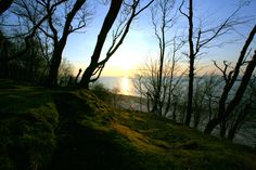 Z klifu.#klif #bałtyk #morze #baltic #sea #seaside #poland #polska #visitpoland #seeuinpoland