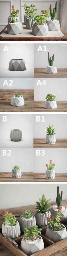 Concrete Geometric Shape Succulent Planter Succulent Style