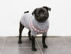 NEW | Luxury Cashmere Dog Jumpers By Ruby Rufus | StyleTails