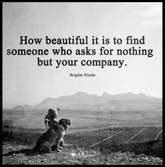 How beautiful it is to find someone who asks for nothing but your company #dog #meme