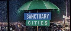 California sanctuary city laws likely allowed 5K crimes committed by illegal aliens