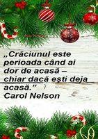 Proverbs 31 25, Christmas Bulbs, Holiday Decor, Dreams, Facebook, Bible, Christmas Light Bulbs