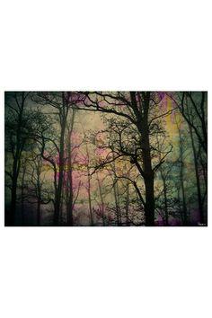 nightcanvas <3