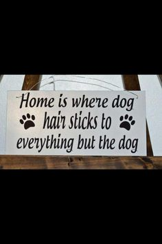 "Quote ""Home is where dog hair sticks to everything but the dog"" :-)"