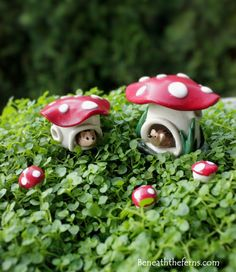 Miniature mushroom house tiny fairy garden by DreamofaDream