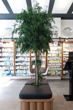 Farmacia Sant Roc Apothecary Pharmacy, Green Interior Design, Cosmetic Shop, Retail Store Design, Cool Store, Green Plants, Barber School, Design Inspiration, Montages
