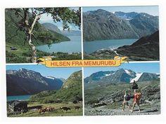 Oppland fylke Lom kommune Hilsen fra Memurubu. 4-bilders kort