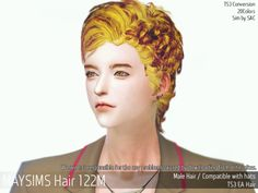 Mayims: May_TS4_Hair122M