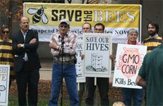 """At EPA's front door: """"Protect bees from pesticides""""   www.panna.org/blog/epas-front-door-protect-bees-pesticides"""