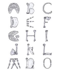 Bone Typeface - Anna Kovesi Portfolio - The Loop