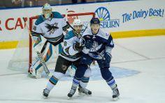 Worcester Sharks goaltender Harri Sateri attempts to look past Sharks rookie defenseman Dylan DeMelo, who is battling St. John's IceCaps forward Carl Klingberg (Feb. 8, 2014).