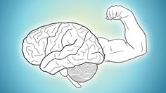 While we're always using our brains, we're not necessarily doing much to keep them in good shape. Here are the top ten sites and tools to train your brain and exercise your mental muscles.