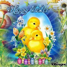 easter pictures easter gifs easter image quotes easter quotes with images easter greetings welcome easter happy easter gifs easter quote gifs Happy Easter Gif, Happy Easter Photos, Happy Easter Wishes, Easter Pictures, Easter Wallpaper, Holiday Wallpaper, Gif Greetings, Easter Quotes, Colouring Pics
