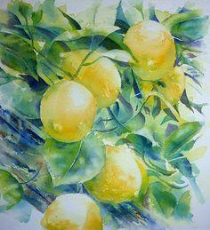 Zitronen 3