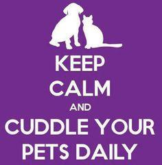 Cuddle daily