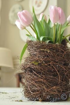Angelhair bird nest vase
