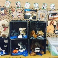 Vet Office, Dramatic Play Area, Pet Vet, Us Vets, Vet Clinics, Seesaw, Strong, Pets, Families