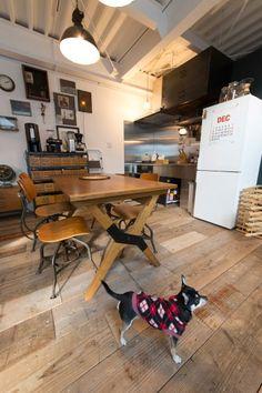 チワワのあんずちゃんが走り回るリビングの床は、建築現場で使われていた古材の足場板。「汚れても気にならないのがいいです」