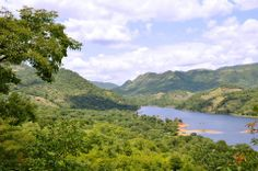 A new national park for Tete - http://www.zambezitraveller.com/cahora-tete/conservation/new-national-park-tete